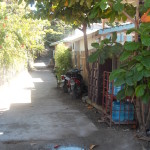West End Village, Bay Islands, Honduras
