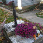 Water pump and purple chrysanthemum