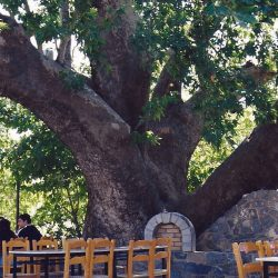 Coffee house in the town square, Chios