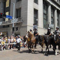 Mounted horses